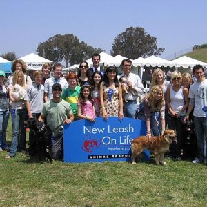 Justin Berfield : New Leash On Life's 5th Annual Nuts For Mutts Dog Show