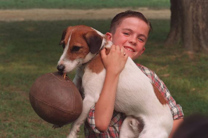 Frankie Muniz in 'My Dog Skip' (2000)
