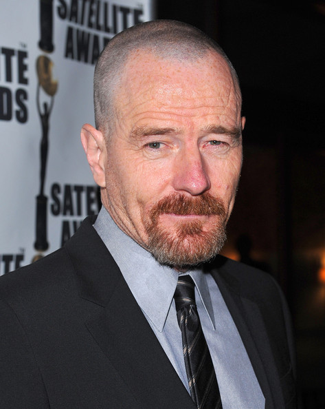 Bryan-Cranston-14th-Annual-Satellite-Awards-December-20-2009-MITMVC-3