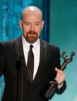 SAG_awards_2013_win.PNG